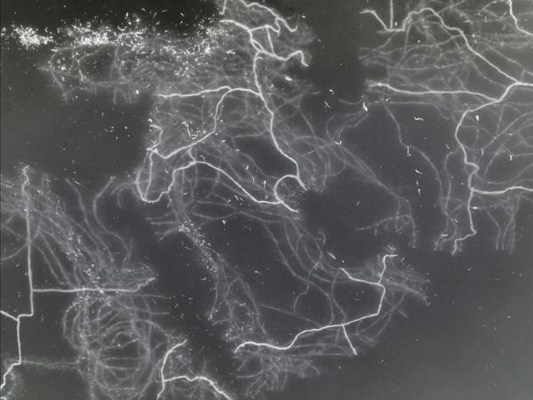 ilmstill, Grenzen / Morgenland, Animation mit dem Verlauf der Grenzen seit etwa 4500 BC