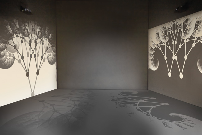 Installation with the two projections