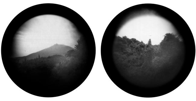 Die Insel des Homo Plantae (Fotografien: John Hubberfield)
