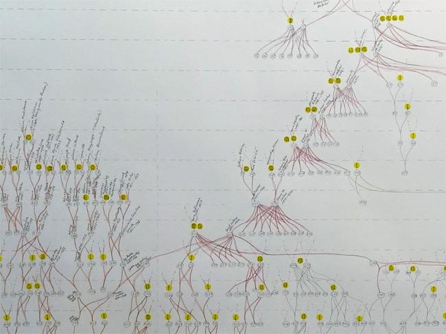 Stammbaum / Bauplan, Detail
