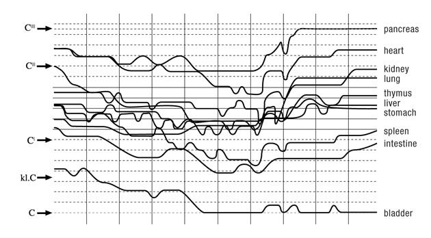 Notation der gemessenen Energiezustände der Organe