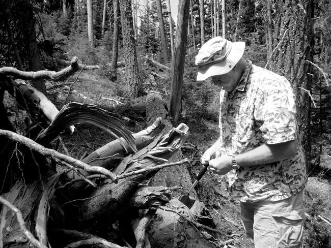 ORGANISM 4 / Fungi, Research in Oregon, USA, Craig Schmidt