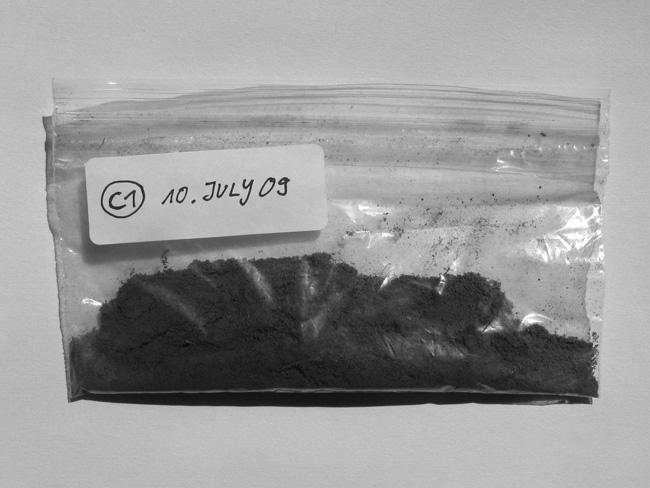 ORGANISM 4 / Fungi, Research in Oregon, USA, soil samples