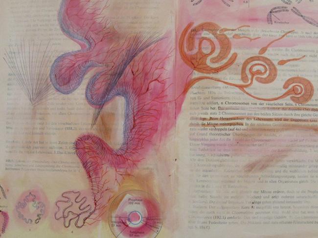 ORGANISMUS 5 #23