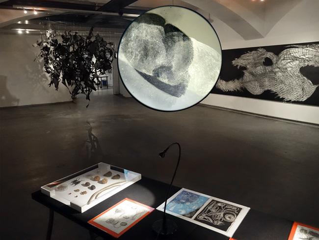 """Installationsansicht, """"DIS-Ordnung – die Poesie des Wucherns"""", mit Birgit Knoechl, das weisse haus, Wien, 2015"""