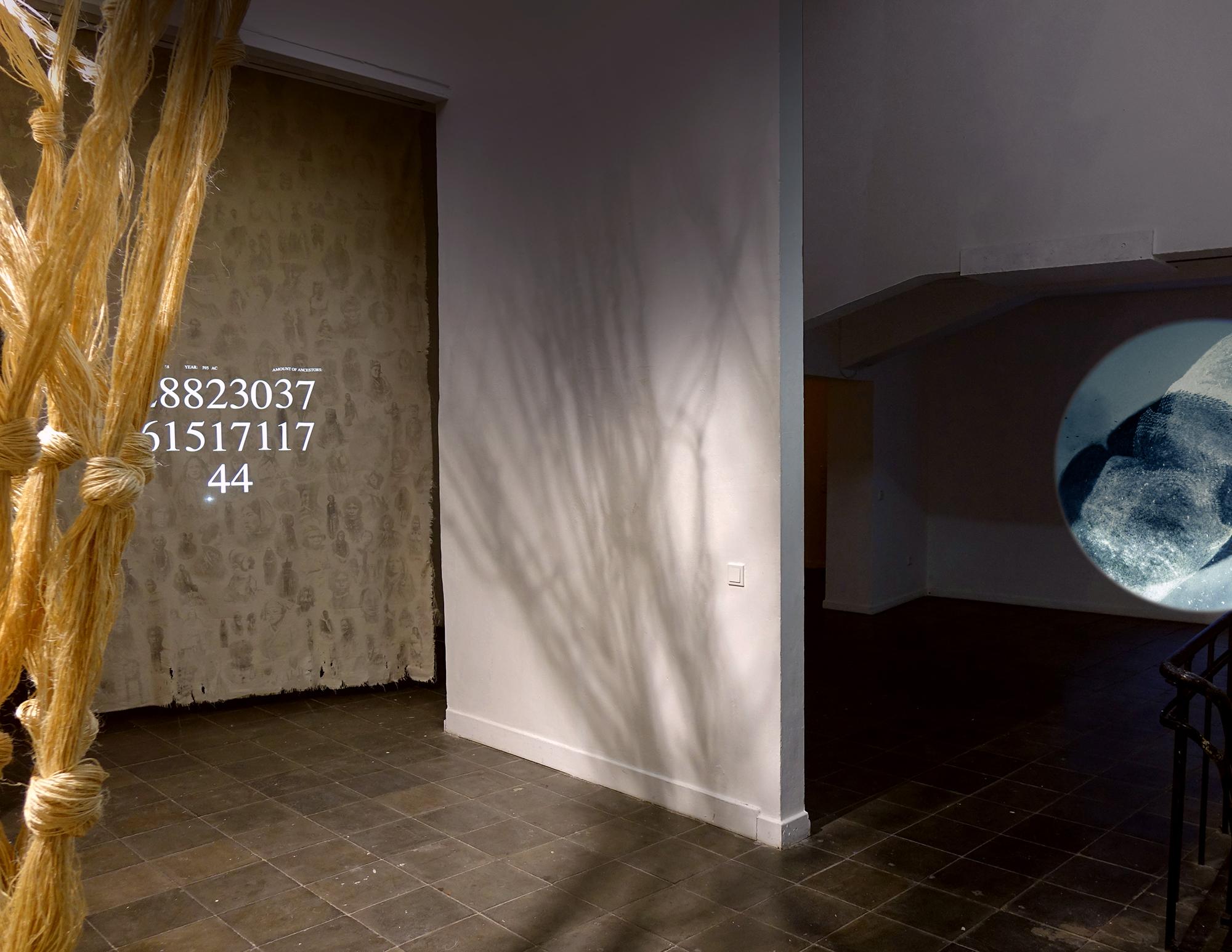 Eva und Ich, Installation im Künstlerhaus Dortmund, 2020